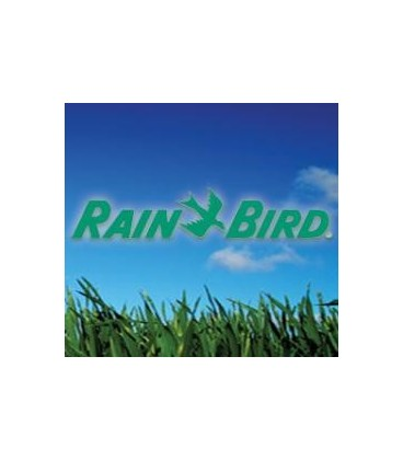 Mantenimiento de una instalación de riego. Consejos de Rain Bird.